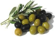 Разница между оливками и маслинами