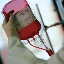 Отличия крови от плазмы