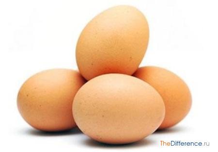 отличие сырого яйца от вареного