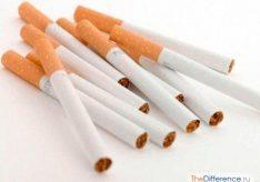 Разница между папиросами и сигаретами