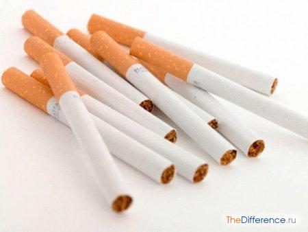 отличие папирос от сигарет