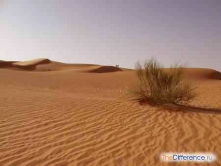 разница между горами и пустыней