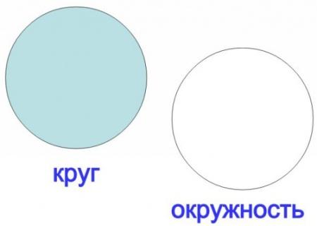отличие окружности от круга
