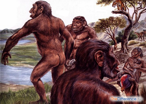 отличие древнейших людей от животных