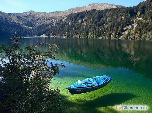 отличие болота от озера