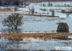 Разница между половодьем, паводком и наводнением