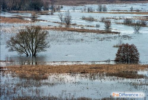 отличие половодья от паводка и наводнения