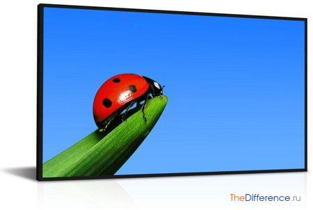 отличие TFT от LCD