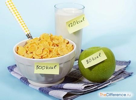 отличие калорий от килокалорий