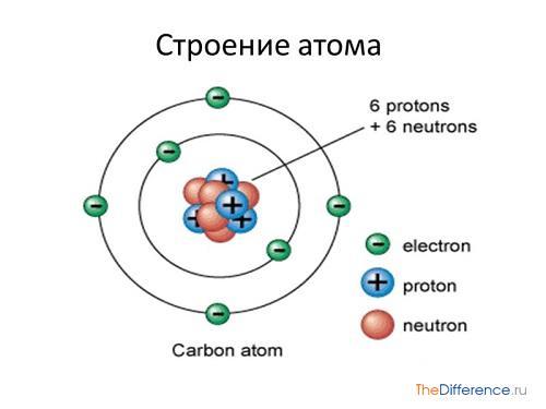 отличие атома от молекулы