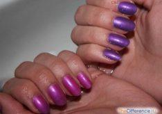 Разница между фиолетовым и сиреневым цветами