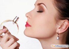 Разница между отдушкой и ароматизатором