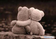 Разница между другом и приятелем