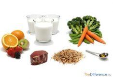 Разница между пребиотиками и пробиотиками
