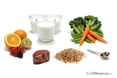 отличие пробиотиков от пребиотиков