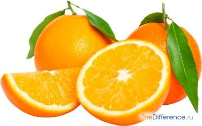 отличие апельсина от мандарина
