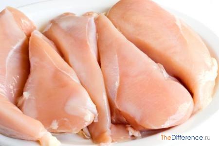 отличие мяса индейки от мяса курицы
