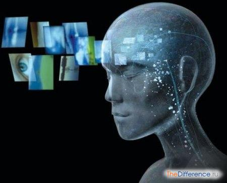 отличие ума от разума