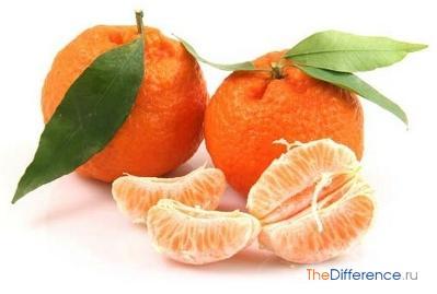 разница между апельсином и мандарином