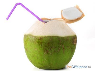 Как выбрать кокос