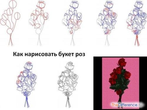 нарисовать букет цветов карандашом
