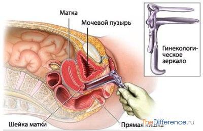minet-rentgen-realniy-osmotr-ginekologom-eroticheskaya-gruppovushka