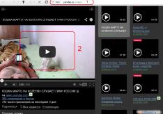 Как скачать видео с Яндекса на компьютер
