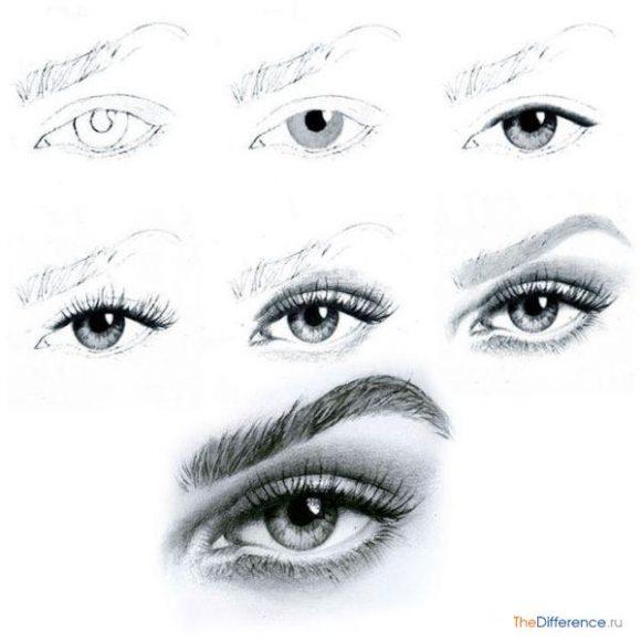 как правильно рисовать глаза