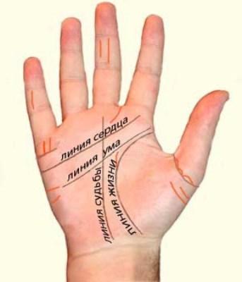Как прочесть свою судьбу по руке