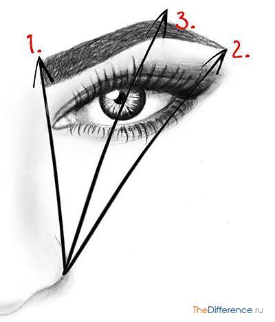 как правильно выщипать брови фото