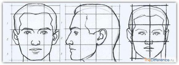 как нарисовать портрет с фотографии
