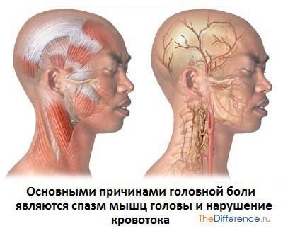 почему болит голова при простуде