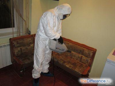 как уничтожить тараканов в квартире