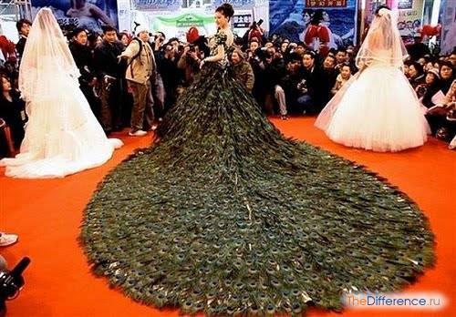Самое пышное свадебное платье в мире фото