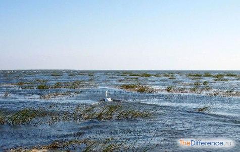 какое самое большое озеро в мире