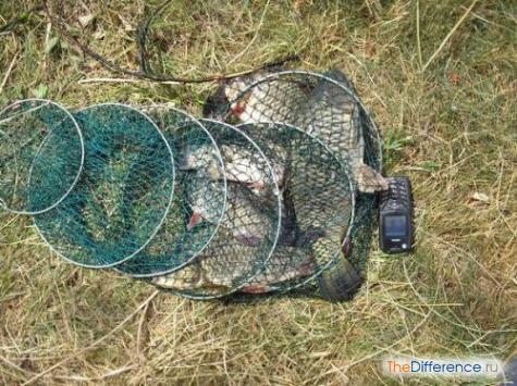 что нужно для летней рыбалки