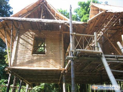 что делают из бамбука