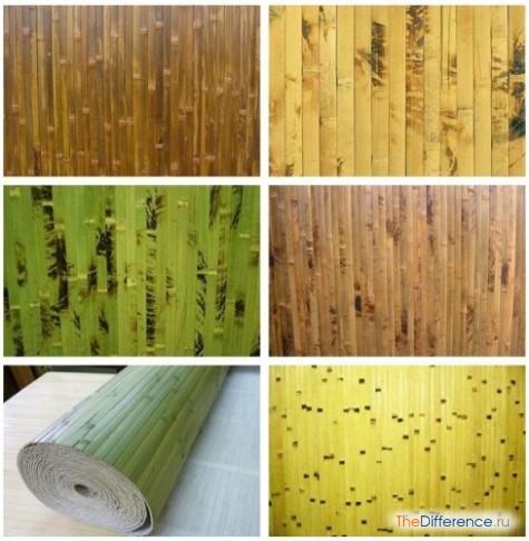 bambuk-5