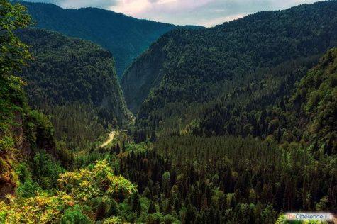 что можно посмотреть в Абхазии самостоятельно без экскурсии