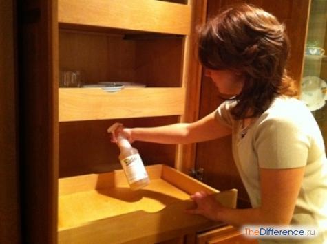 как избавиться от клопов в домашних условиях