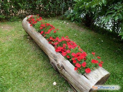 как можно украсить двор возле дома