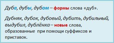 chto-izuchaet-morfemika-11