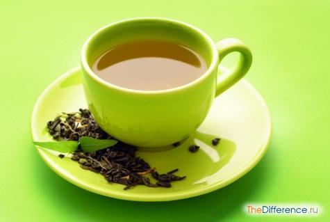 чем отличается зеленый чай от белого чая