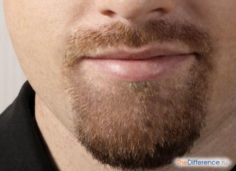 как покрасить бороду