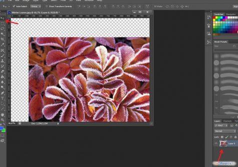 kak-razblokirovat-sloj-v-fotoshope-4
