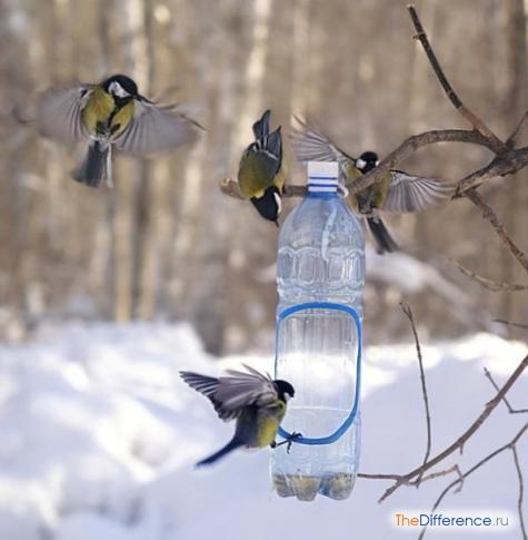 сделать кормушку для птиц из пластиковой бутылки