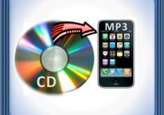 Разница между CD и MP3