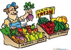 Разница между натуральным хозяйством и товарным