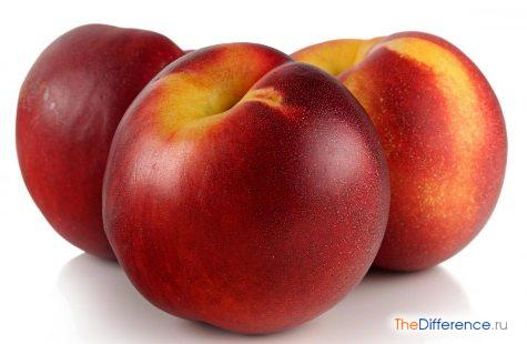 разница между нектарином и персиком