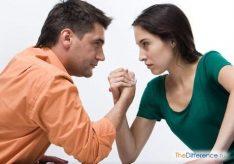 Разница между спором и ссорой